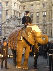 Zumba. elefante cartier