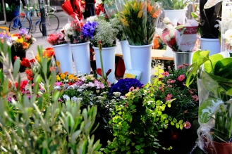 Flores Madrileñas
