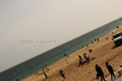 La playa de Marbella